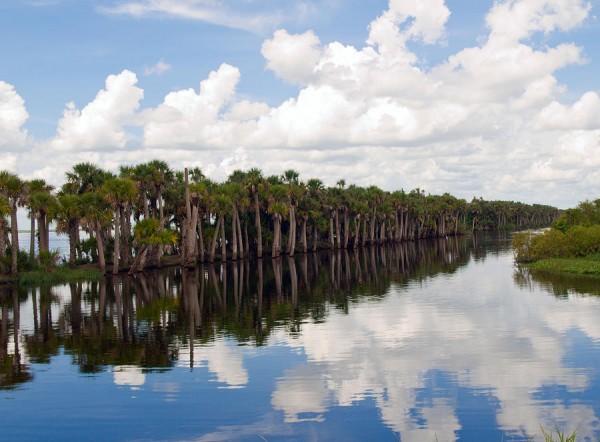stick marsh farm 13 florida fishing guide