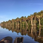 Airboat Stick Marsh / Farm 13 Fishing